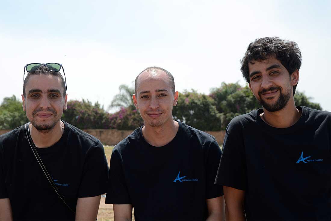 Das Team von Animals' Angels auf dem Tiermärkten in Marokko