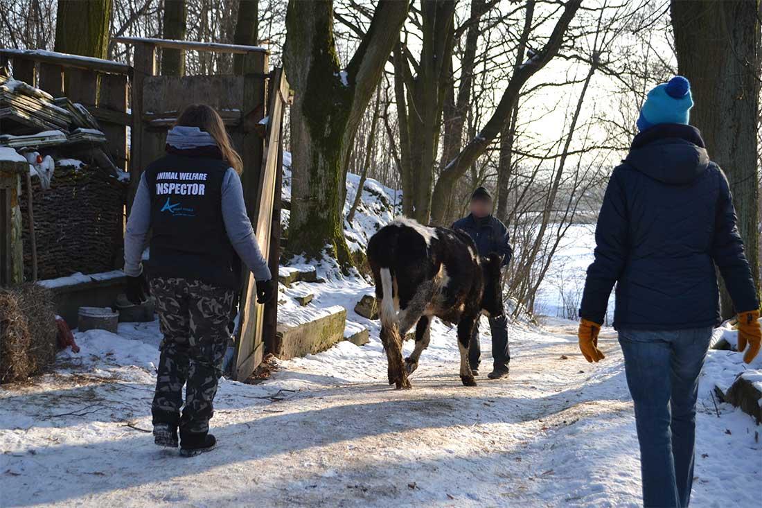 Tierhaltung Kontrolle Polen