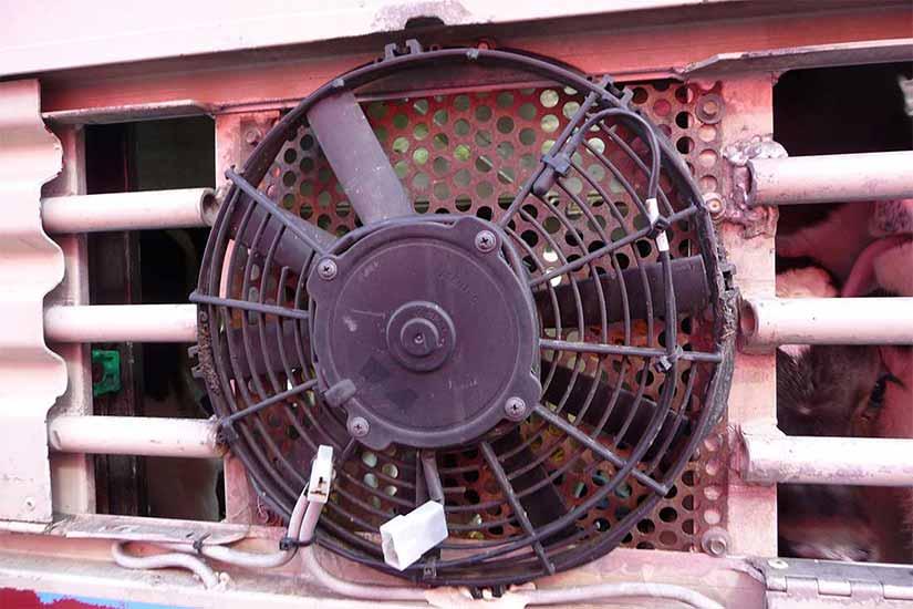 Ein Ventilator an der Außenwand eines Tiertransporters
