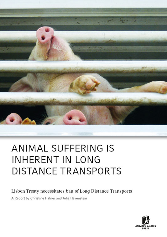 [Translate to englisch:] Dokumentation: Animal Suffering Long Distance Transport