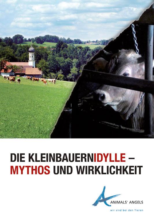 Dokumentation: Die Würde der Kühe