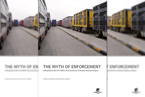 Myth of Enforcement, Animals' Angels
