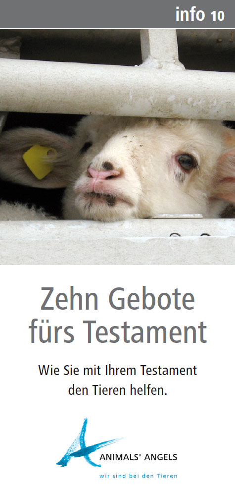 Info10 - Testament