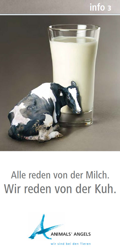 Info3 - Alle reden von der Milch