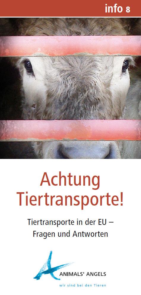 Info8 - Achtung Tiertransporte