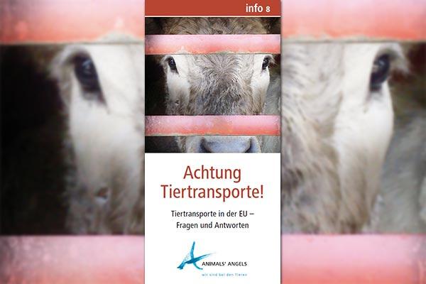Tiertransporte in der EU, Fragen und Antworten, Infoflyer