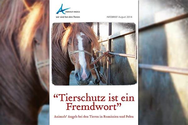 Tierschutz ist ein Fremdwort