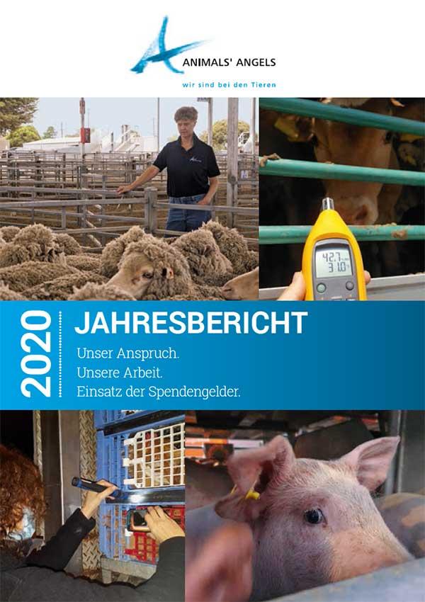 Animals' Angels Jahresbericht 2020