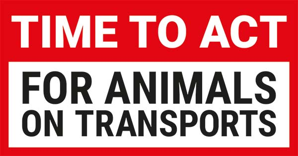 Time to Act for Animals on Transport