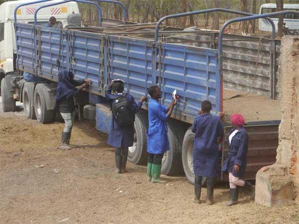 Animals' Angels besucht einen Rindermarkt mit 40 Studierenden des Landwirtschaftscolleges LITA