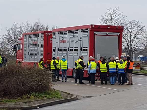 Polizisten und Veterinäre bei einem Animals' Angels-Schulungskurs in Brandenburg