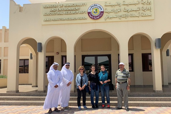 Animals' Angels Meeting the Ministry for Environment in Qatar