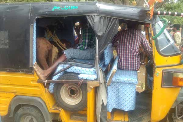 A Goat is Being Transported in a Rickshaw at Thallapalem Animal Market