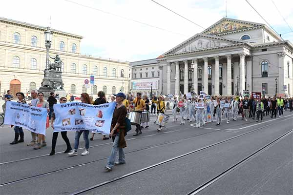 Demo gegen Tiertransporte in München (c) Animals United e. V.