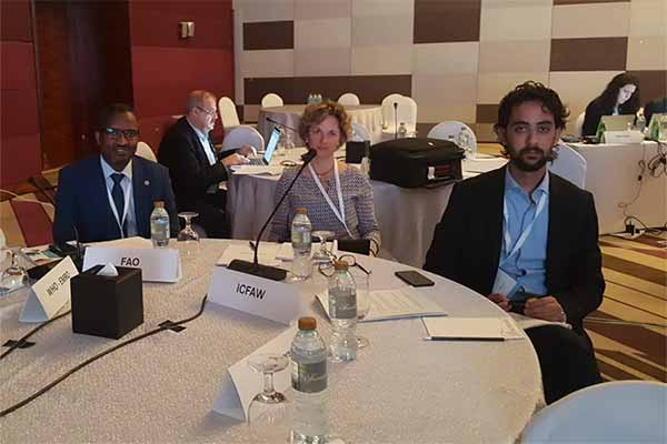 Animals' Angels at the OIE Conference in Abu Dhabi