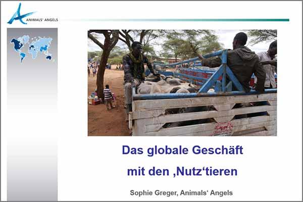 Animals' Angels Vortrag beim Umweltbildungswerk in Thüringen