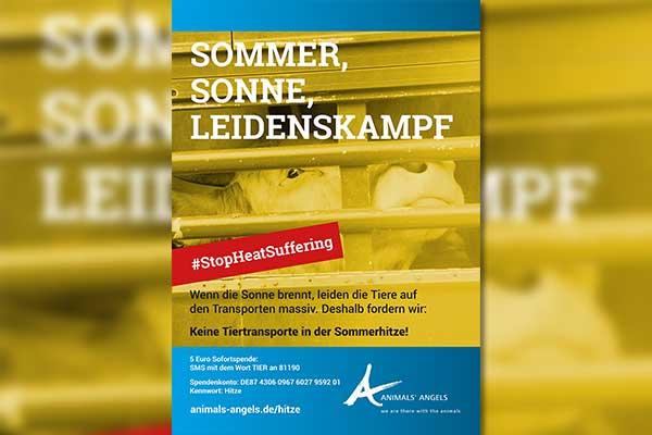 Plakatkampagne Hitzetransporte #StopHeatSuffering