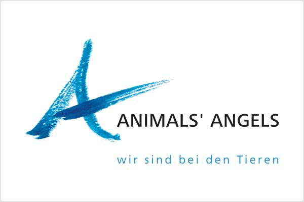 Animals' Angels Logo