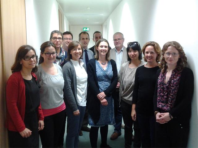 Arbeitsgruppe Brüssel: EU-Leitlinien zur Transportfähigkeit von Equiden