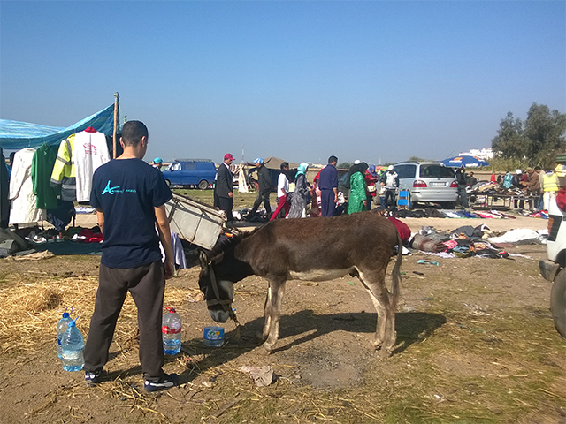Das Animals' Angels Team tränkt die Esel auf dem Tiermarkt von Skherat