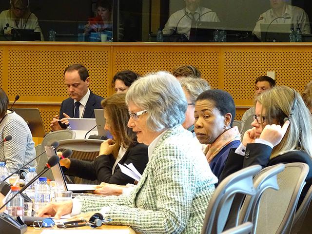 Christa Blanke spricht vor dem Petitionskomitee des EU-Parlaments zur 8hours Petition