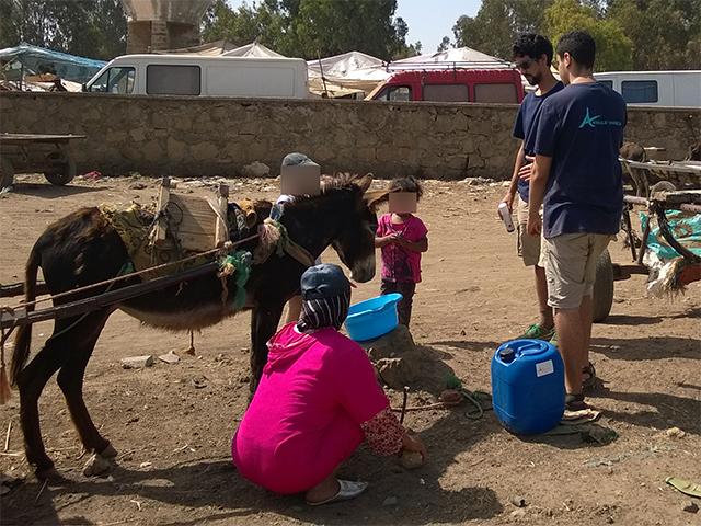 Das Animals' Angels-Team im Gespräch mit den Besitern der Esel auf dem Tiermarkt von Mers El Kheir, Marokko