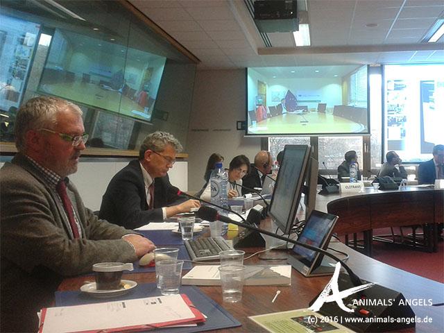 Dr. Alexander Rabitsch im Auftrag von Animals' Angels bei der Advisory Group in Brüssel