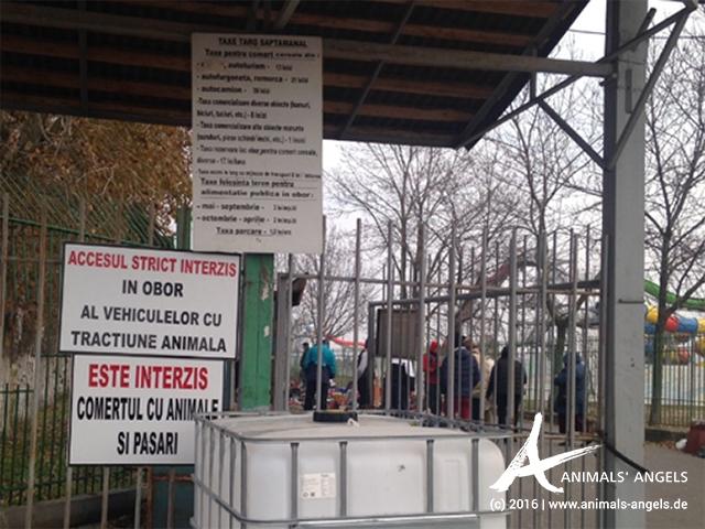 Warnschilder am Markt von Targoviste