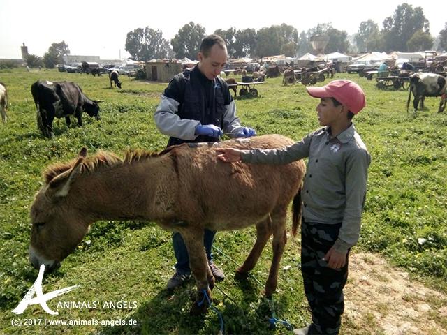 Einsatz auf dem Tiermarkt in Skherat