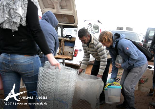 Animal Week: Umzäunungen für die Hühner
