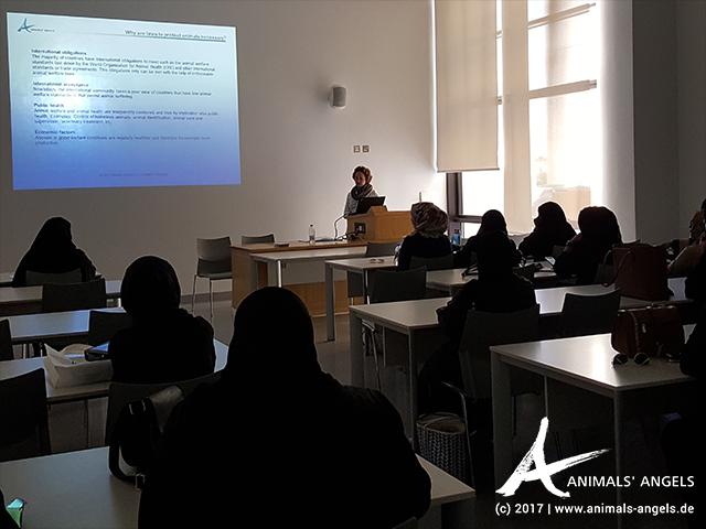 Animals' Angels gibt Tierschutzrecht-Unterricht an der Universität Doha