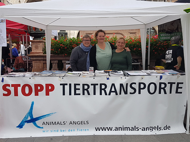 Animals' Angels Infostand Wiesn Vegan