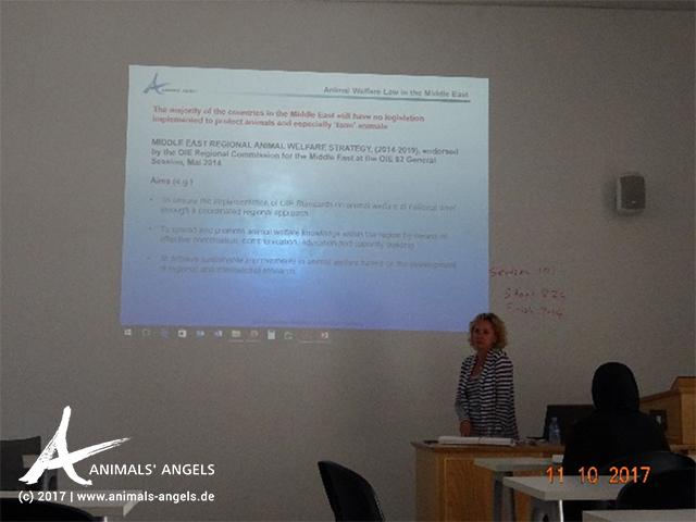 Animals' Angels hält eine Tierschutzrecht-Vorlesung am Law College in Doha, Katar