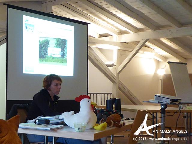 Animals' Angels Vortrag auf der Fortbildung zum Mitweltpädagogen der Bildungswerkstatt Mach Zukunft