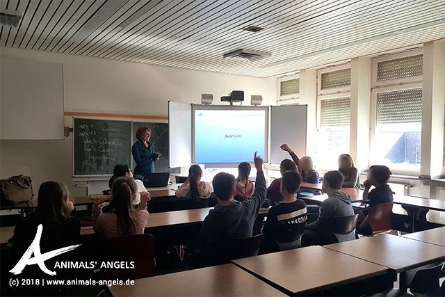 Animals' Angels gibt Tierschutz-Unterricht am Franziskus Gymnasium in Remagen