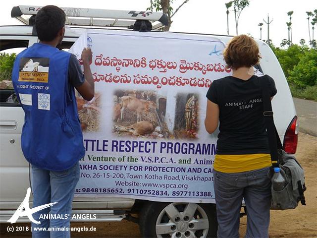 Aufklärungskampagne zum Schutz der Kälber in Denkada