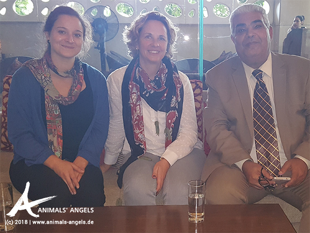 Animals' Angels trifft sich mit Dr. Rabie H. Fayed von der tiermedizinischen Fakultät der Uni Kairo.
