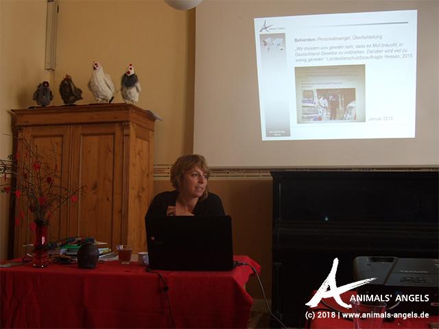 Sophie von Animals' Angels bei der Fortbildung zum Mitweltlehrer