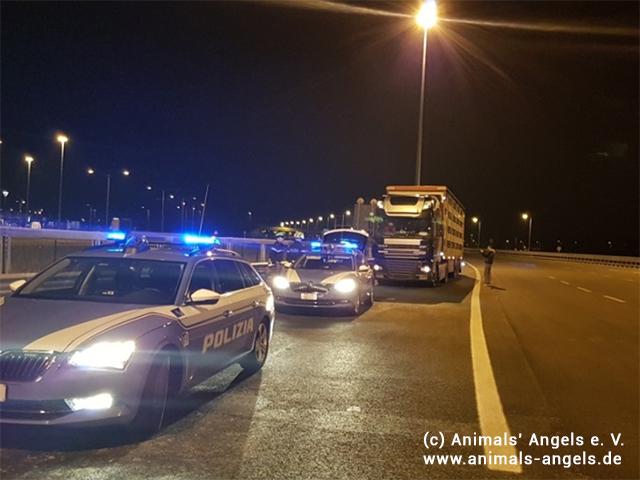 Polizeikontrolle Lämmertransporte Ostern